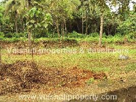 8.2 Cent Residential Plot for Sale in Thondayad, Kozhikode