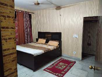 3 BHK 1850 Sq.ft. Residential Apartment for Rent in Sector 20 Panchkula