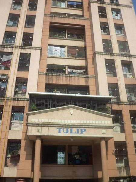 1 BHK Flats & Apartments for Rent in Majiwada, Thane - 625 Sq.ft.