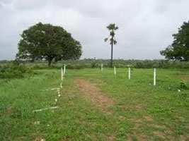 Residential Land / Plot for Sale in Sonipat - 243 Sq. Yards