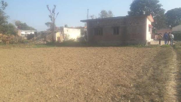 900 Sq. Yards Farm Land for Sale in Selaqui, Dehradun