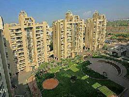 4 BHK Flat for Rent in Kharadi, Pune