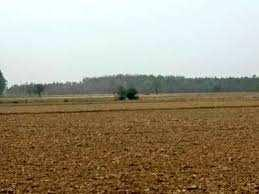 1531 Acre Industrial Land for Sale in Site 5, Greater Noida