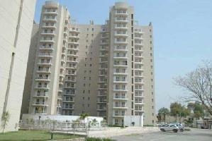 3 BHK Flat for Rent in Faridabad