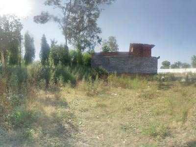 Residential Land / Plot for Sale in Jalandhar Cantt. - 1875 Sq.ft.