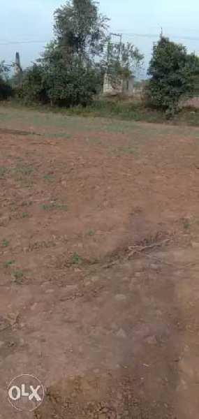 4000 Sq. Yards Farm Land for Sale in Raipur Rani, Panchkula