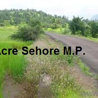 500 Acre Farm Land for Sale in Ichhawar, Sehore