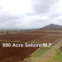 800 Acre Farm Land for Sale in Ichhawar, Sehore