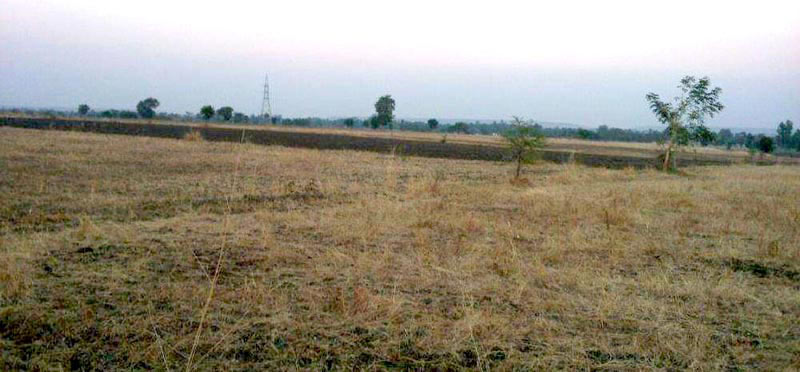 Farm Land for Sale in Guna - 4200 Acre