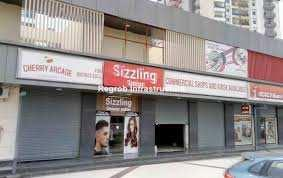 280 Sq.ft. Commercial Shop for Rent in Noida Extension, Noida