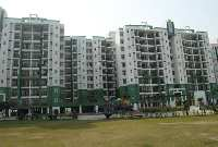 650 Sq. Yards Residential Plot for Sale in Sector 15, Bahadurgarh