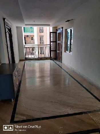 5 BHK 6000 Sq.ft. House & Villa for Sale in Jubilee Hills, Hyderabad