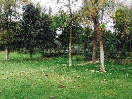 512 Sq. Yards Residential Plot for Sale in Vasant Kunj D6