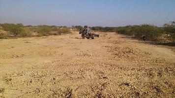 41 Bigha Farm Land for Sale in Nainwa, Bundi