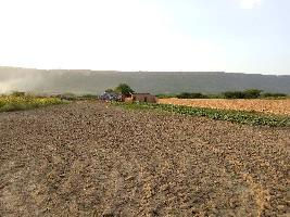 22 Bigha Farm Land for Sale in Lakheri, Bundi