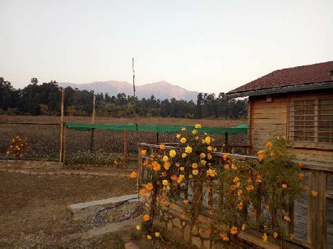 900 Sq. Yards Farm Land for Sale in Jagatpur, Dehradun