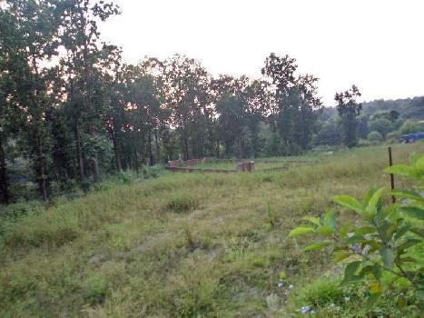 150 Sq. Yards Residential Plot for Sale in Thano, Dehradun