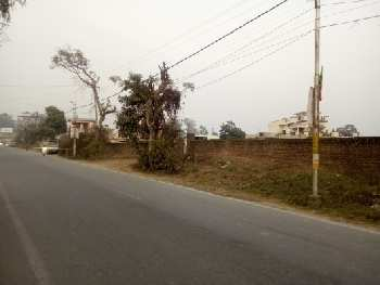 233 Sq. Yards Commercial Land for Sale in Jolly Grant, Dehradun