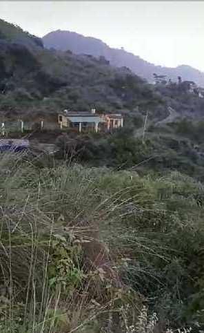 25 Bigha Farm Land for Sale in Mussoorie Road, Dehradun