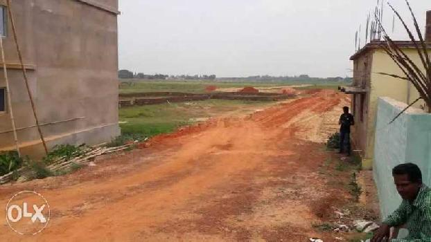 1200 Sq.ft. Residential Plot for Sale in Belagachhia, Cuttack