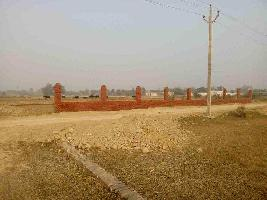 1000 Sq.ft. Residential Plot for Sale in Nilmatha, Lucknow