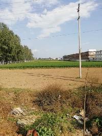 5 Acre Farm Land for Sale in Barwala, Panchkula