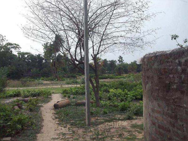 Residential Plot for Sale in Bardhaman - 1440 Sq.ft.