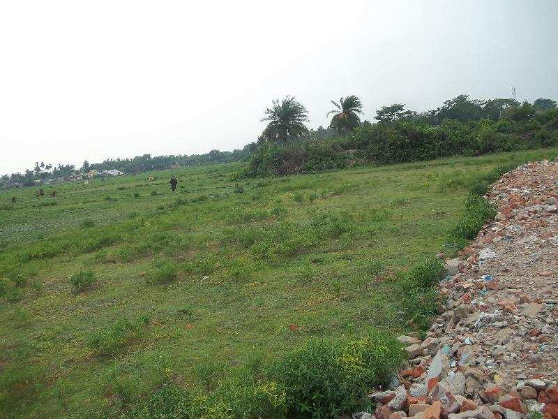 Residential Plot for Sale in Bardhaman - 4320 Sq. Feet