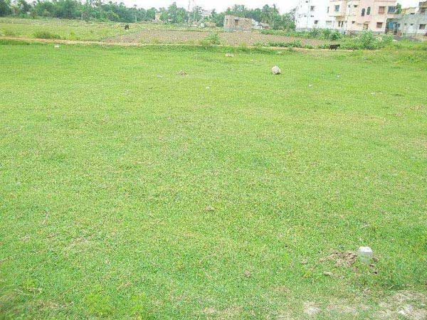 Residential Plot for Sale in Bardhaman - 2520 Sq. Feet