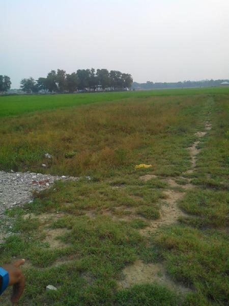 Agricultural/Farm Land for Sale in West Bengal - 115200 Sq. Feet