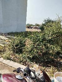 1500 Sq.ft. Residential Plot for Sale in Vijay Nagar, Indore