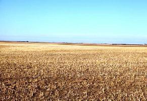 2.25 Acre Farm Land for Sale in Gadag Road, Hubli