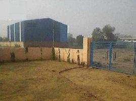 100000 Sq.ft. Warehouse for Rent in Hosiery Complex, Noida