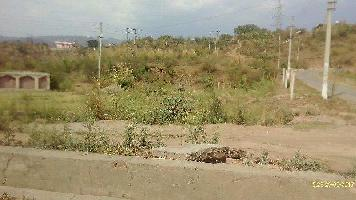 18 Bigha Commercial Land for Sale in Nalagarh, Solan