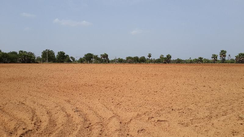 Agricultural/Farm Land for Sale in Nalgonda - 27.03 Acre